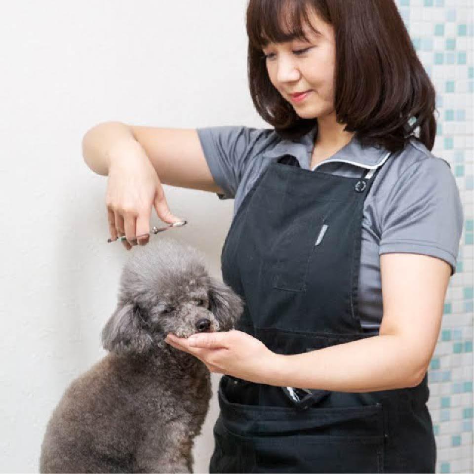 staff_matsui-miwa-50.jpg