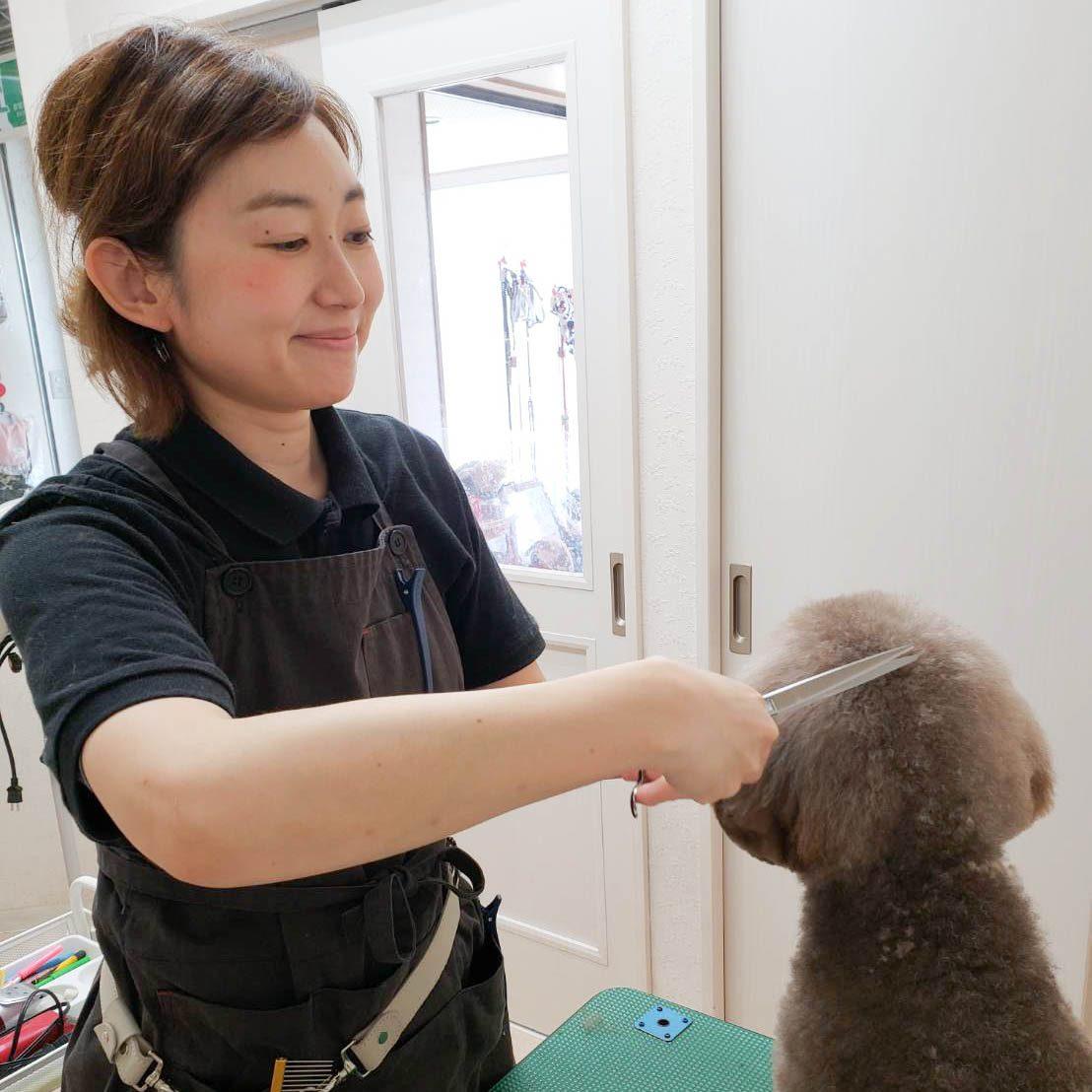 hosaka-nami_4681.jpg