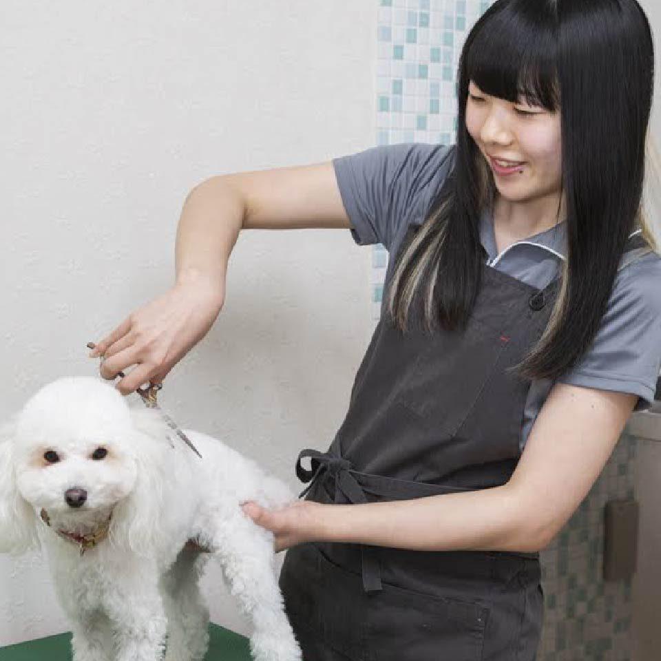 staff_tsutsumi-madoka-50.jpg
